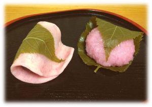 桜餅・道明寺_x