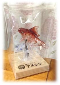 アメシン金魚